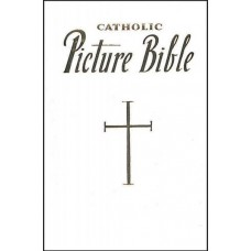 NEW CATHOLIC PICTURE BIBLE POPULAR STORIES FROM THE OLD AND NEW TESTAMENTS